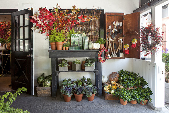 Garden - Potted plants and gardening supplies on display