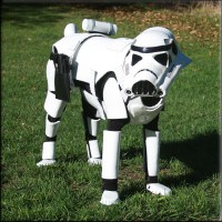 Salvage Your Monday with 13 Dogs Dressed as 'Star Wars