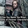 Can You Name The Minor Game Of Thrones Characters