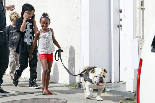Maddox Jolie-Pitt Three of Angelina Jolie and Brad Pitt's 6 children Zahara, Maddox and Shiloh take a walk to the market for snacks with their nanny.  Along the way Maddox walked a friendly looking dog, tomboy Shiloh showed off her punk spirit in a Ramones shirt and Zahara clung close to her sister.