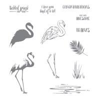 Fabulous Flamingo Photopolymer Stamp Set