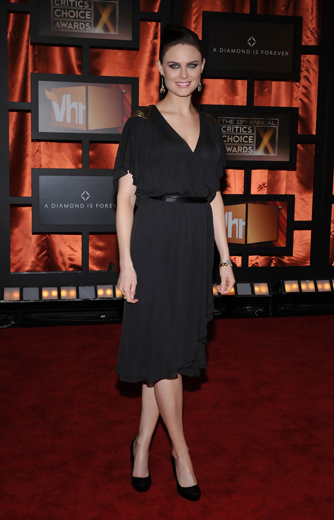 Emily Deschanel Cocktail Dress  Emily Deschanel Looks  StyleBistro