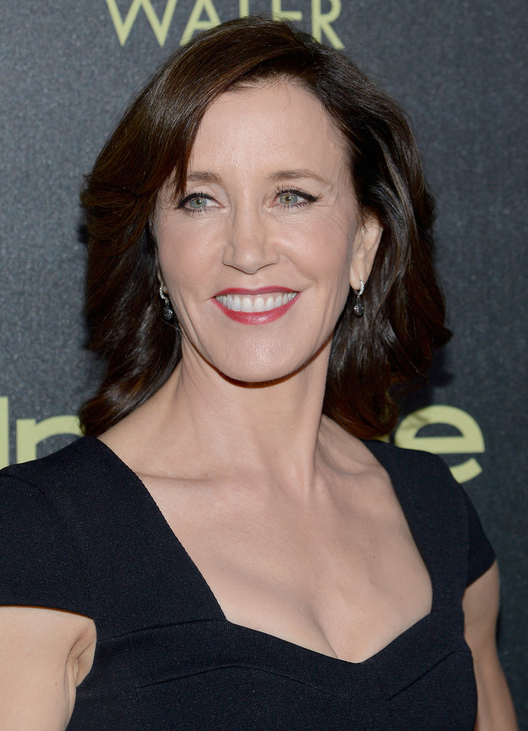 Felicity Huffman Short Side Part  Short Hairstyles Lookbook  StyleBistro