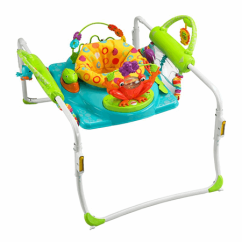 Walker Bouncing Chair Alps Mountaineering King Kong First Steps Jumperoo Bfb21 Fisher Price