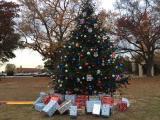 Fayetteville tree lighting