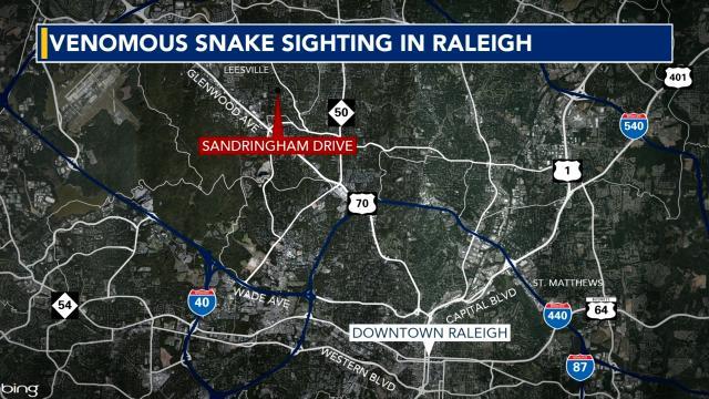 Venomous cobra on the loose in north Raleigh neighborhood