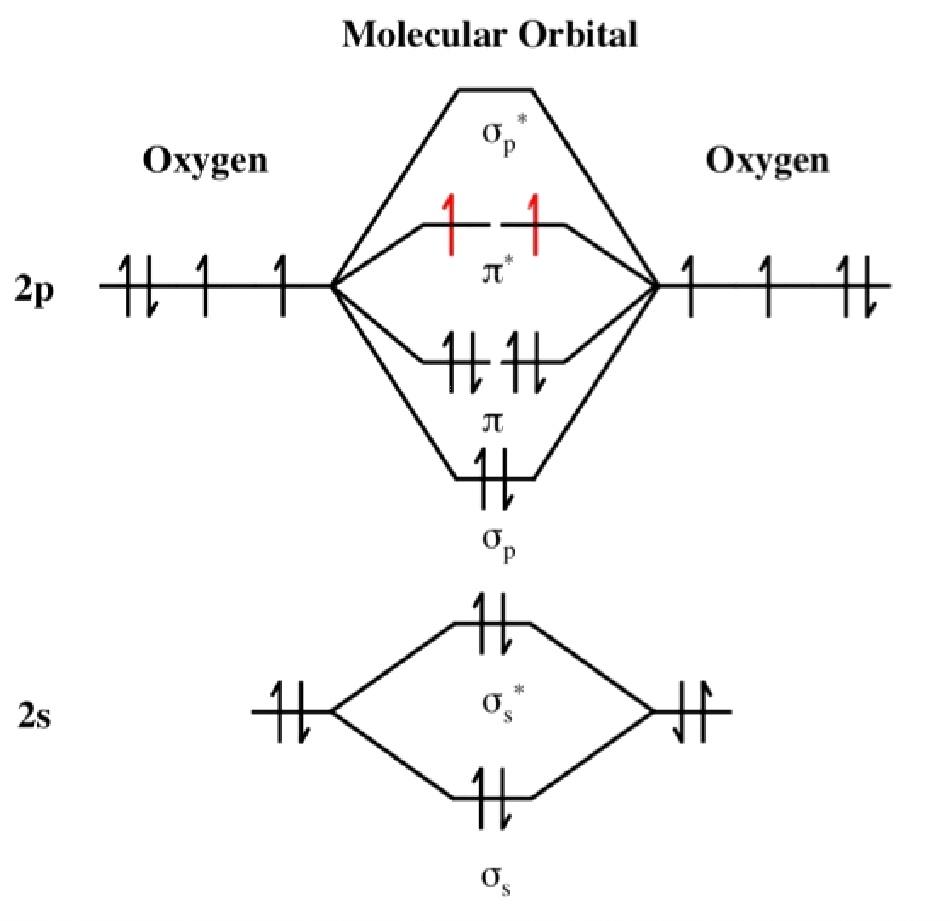 CHEM1902 Oxygen
