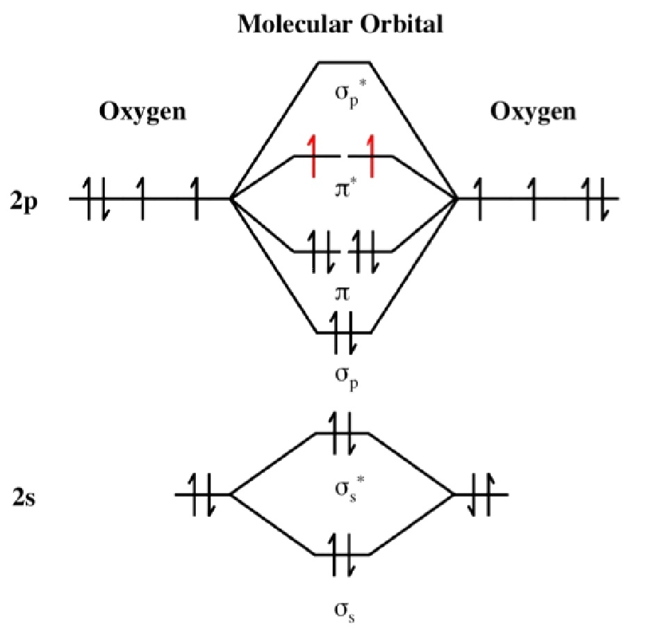 medium resolution of lewis structure for dioxygen mo diagram for dioxygen