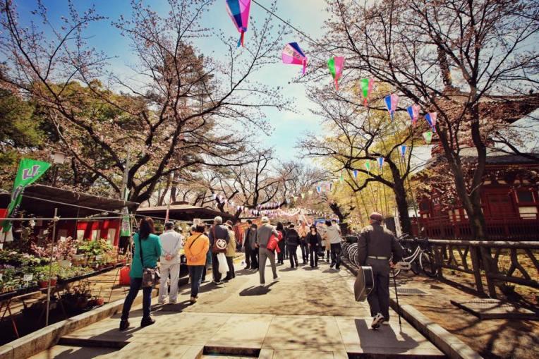 Festivalul primaverii in Kawagoe