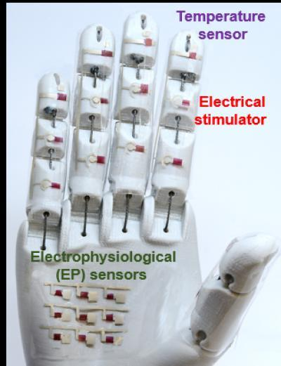 robotic hand to serve in medicine