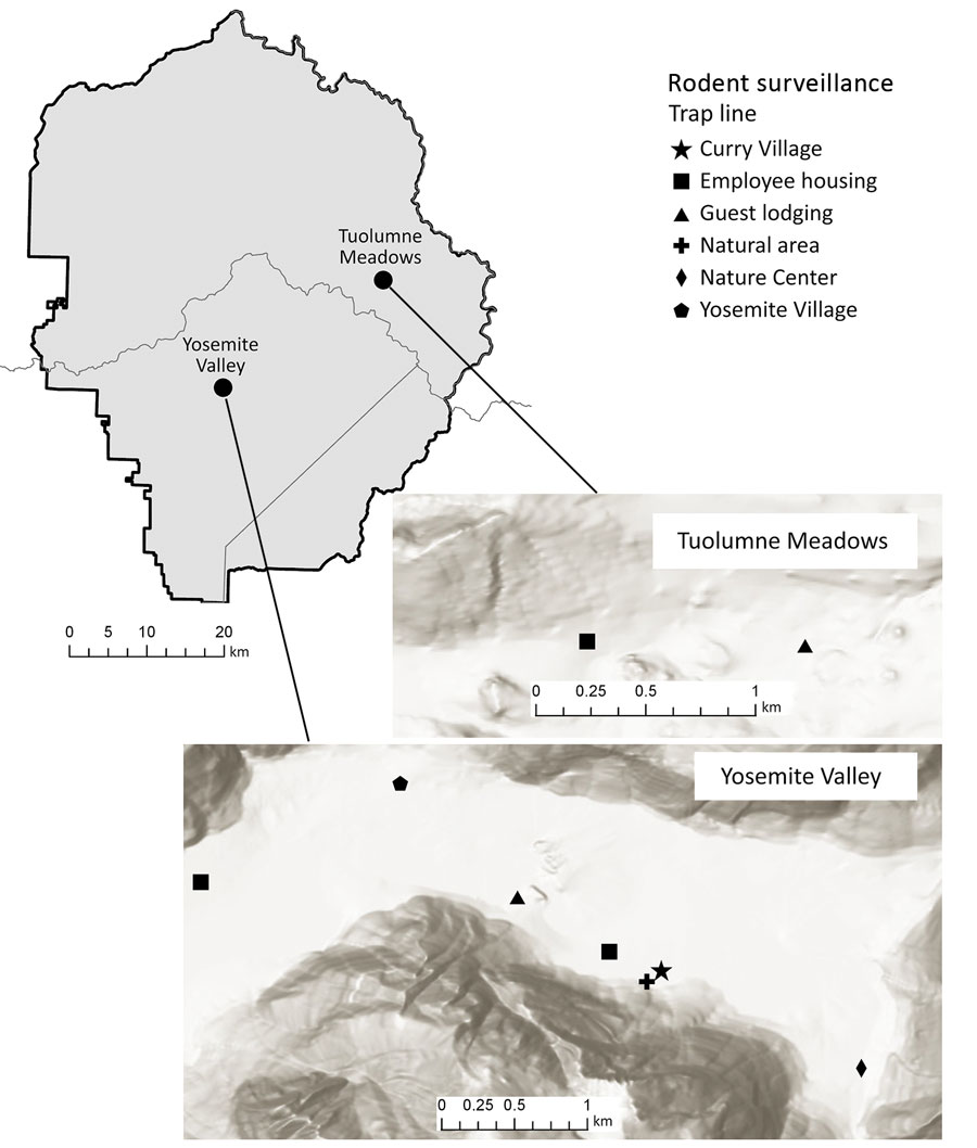 Figure 1 - Long-Term Rodent Surveillance after Outbreak of ...