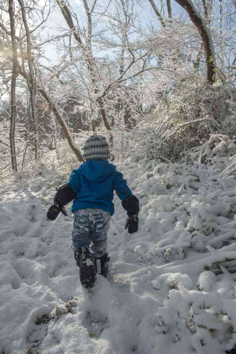 boy in snow covered woods