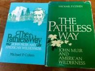 Pathless Way