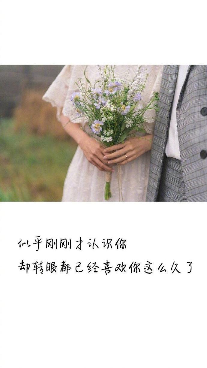 图片带情话文字:如果生命可以重来,无论多少次我都愿与你相遇