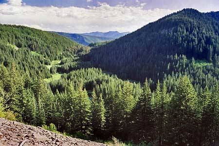 Beautiful Tumala Lakes and Meadows in the Roaring River backcountry
