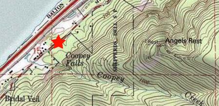 Gorge Aspen Colony WyEast Blog