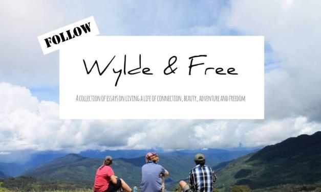 New: Follow Wylde & Free