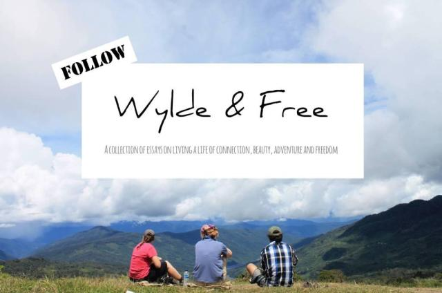 follow wyldeandfree.com