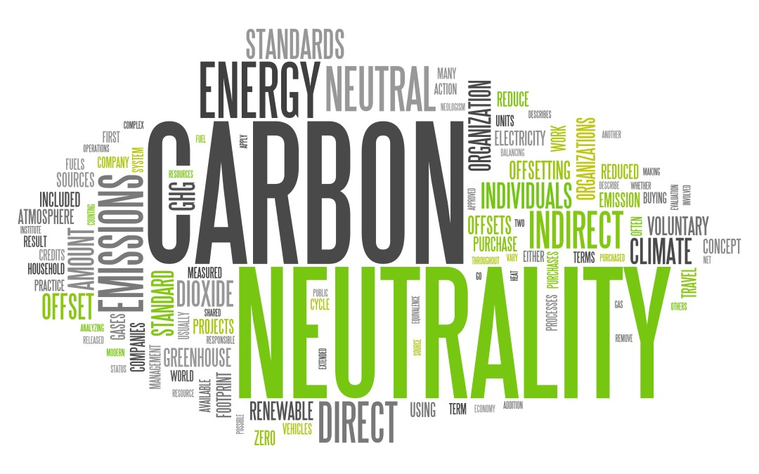 Sustainable Business: Seven paths to Net Zero & Green Recovery