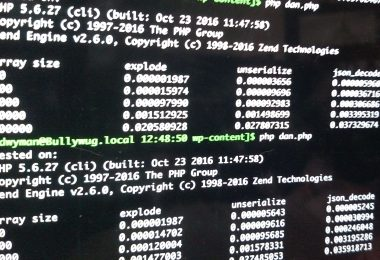screenshot of test output