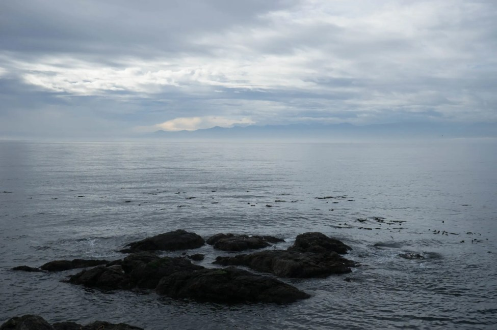 The view from Clover Point
