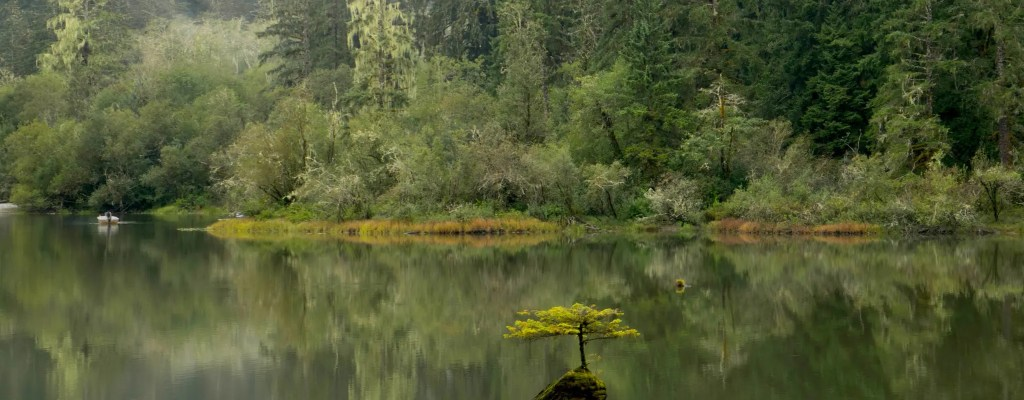 Vancouver Island: Day 2