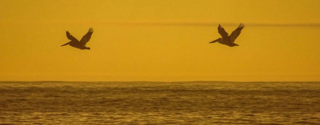 Sunday Serenity: Sunset at Glass Beach