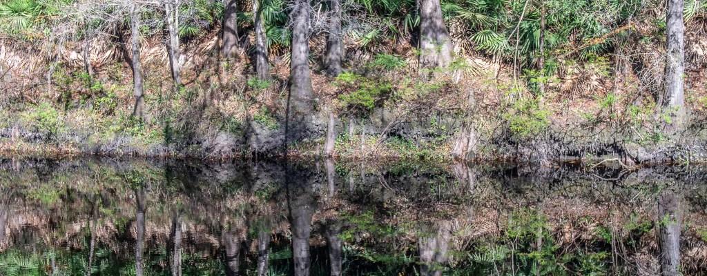 Review: O'Leno State Park, FL