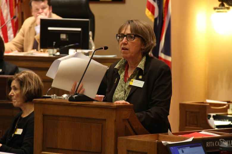 Rep. Cathy Connolly (D, HD13, Laramie) speaks during the 2015 General Session. (Gregory Nickerson/WyoFile)