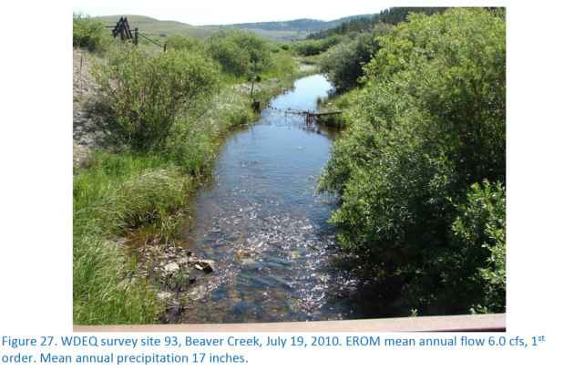 This photograph in a document outlining Wyoming's proposed change in water standards show a creek with an average annual flow of 6 cfs. Conservation districts checked hundreds of sites to validate a state model to reclassify 87,775 miles of streams as too shallow for recreation and immersion. (Wyoming DEQ)