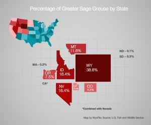 This map, in which western states' sizes are rendered according to their percentage of the world's population of greater sage grouse, reveals the importance of Wyoming in the bird's conservation. (WyoFile)