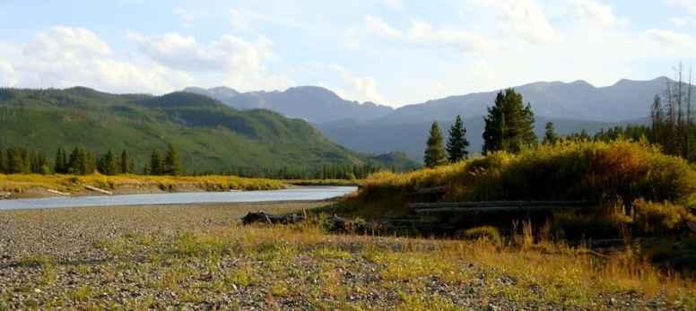 Off Grassy Lake Road, John D. Rockefeller Parkway area. (Nancy Debevoise, Lander Wyo.)