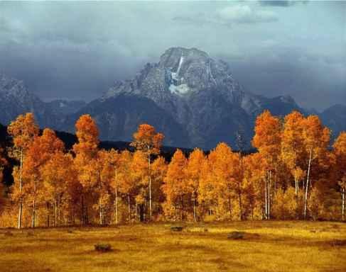 """""""Mt. Moran. Public Lands data Collection."""" (Rod Morrison)"""