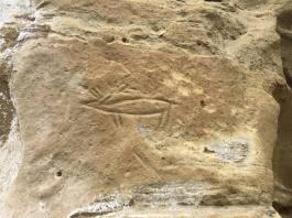 Petroglyph in Wyoming. (courtesy Amanda McClure)