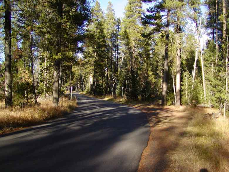 The Moose-Wilson road is so narrow it can be dangerous for cyclists, a growing constituency in Grand Teton National Park. The Teton Village Association would like to see a separate path for cyclists along at least part of the 8-mile route. (National Park Service)