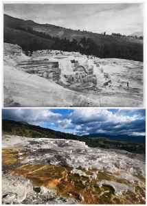 TOP July 21-24, 1871 214 GROUP OF LOWER BASINS (William Henry Jackson) BOTTOM Several of Jackson's images at Mammoth Hot Springs, including this of Minerva Terrace, were re-photographed at a wider field of view in order to show almost a century and a half of growth and expansion. The hot springs at Mammoth can deposit anywhere from a trace to one meter of travertine, or calcium carbonate, per year. Combined, the hot springs at Mammoth are estimated to flow at a rate of about 500 gallons per minute, leaving behind more than 2 tons of travertine every day. (Bradly J. Boner)