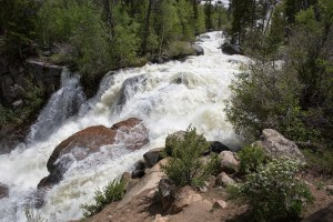 Wyoming family-friendly hikes