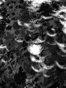 Slivers of Sol