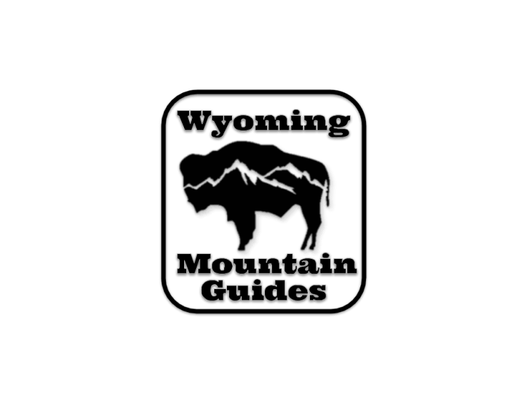 Wyoming Mountain Guides bison logo