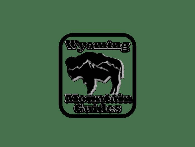 Wyoming Mountain Guides bison logo