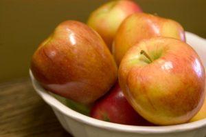Honeycrisp Apple | Photo courtesy of Bailey Nurseries, Inc.