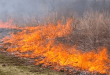Two brush fires contained in Campbell