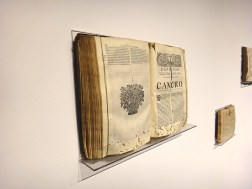 wystawowe zwierze 13. Istanbul Biennale, Turkey (2)
