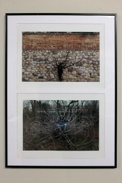 miekkie-kody-muzeum-wspolczesne-wroclaw-wystawowe-zwierze-art-blog-1