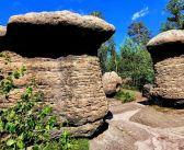 Kamienne Grzyby z Broumowskich Ścian [GÓRY STOŁOWE]
