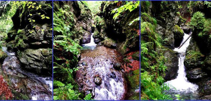 Kanion i wodospady Srebrnego Potoku w Górach Złotych – Nýznerovské vodopády