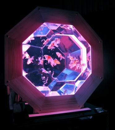Hexagonal aquarium which created optical illusions.