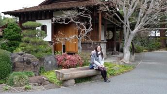 At the San Mateo Japanese Tea Garden