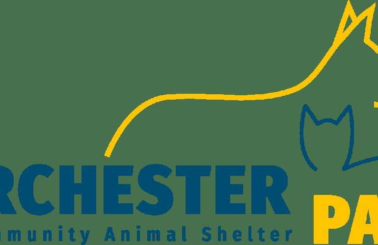 Dorchester Paws – Tis the Season
