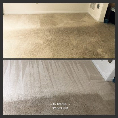 Providing carpet cleaning service to the Edwardsville area